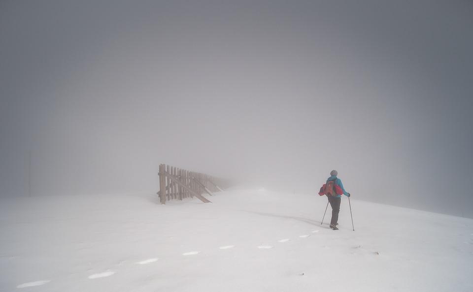 winter-4730764_960_720.jpg