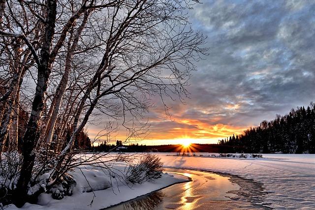 winter-landscape-2995987_640.jpg