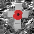 Remembrance Sunday 2013