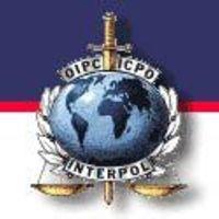 Az Interpol 2.0 (x)