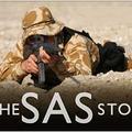 Vendégoldal - Bet-li: A SAS