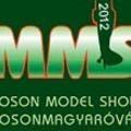 Képes beszámoló - MOSONSHOW