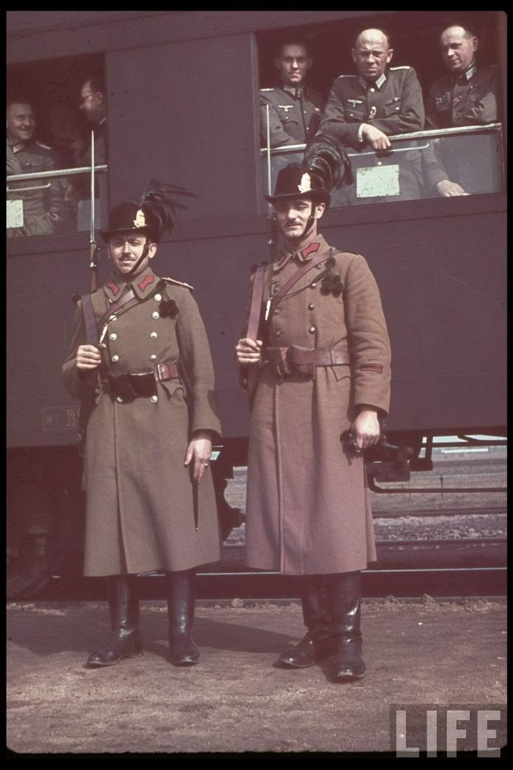hungarian_soldiers_world_war_ii.jpg