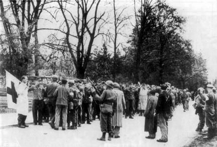 Dachausurrender.jpg