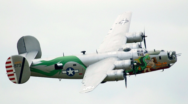 B24 Dragon and its tail