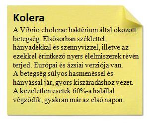 kolera.png