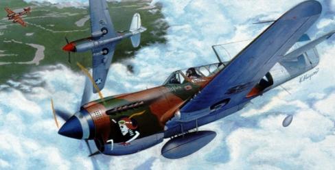 hasegawa-1-72-scale-00139-p-40n-warhawk-plastic-model-kit-free-shipping.jpg