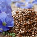 A magvak és gabonafélék jótékony hatásáról III. rész