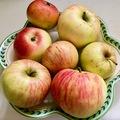 Nyári almaleves