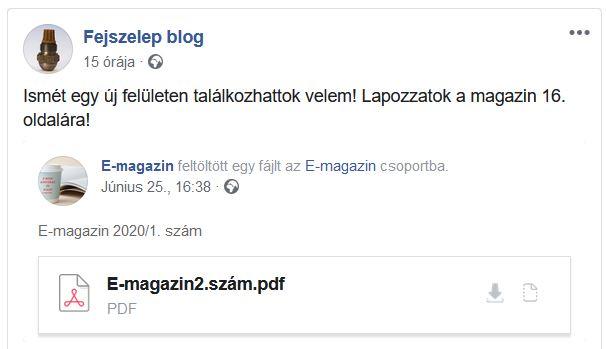e_magazin.JPG
