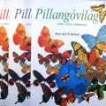Pillangóvilág 3