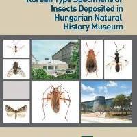 A Magyar Természettudományi Múzeumban őrzött rovarok koreai típusanyagai