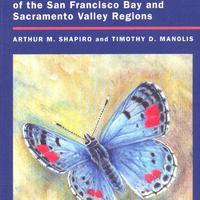 Kalifornia pillangói