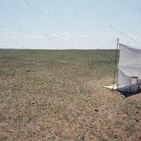 Nevek, példányok, és típusok - Hreblay Márton élete (1963-2000) a Noctuidae lepkecsalád kutatásáért