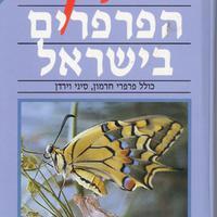 A szentföld pillangói