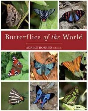 butterflies-of-the-world.jpg