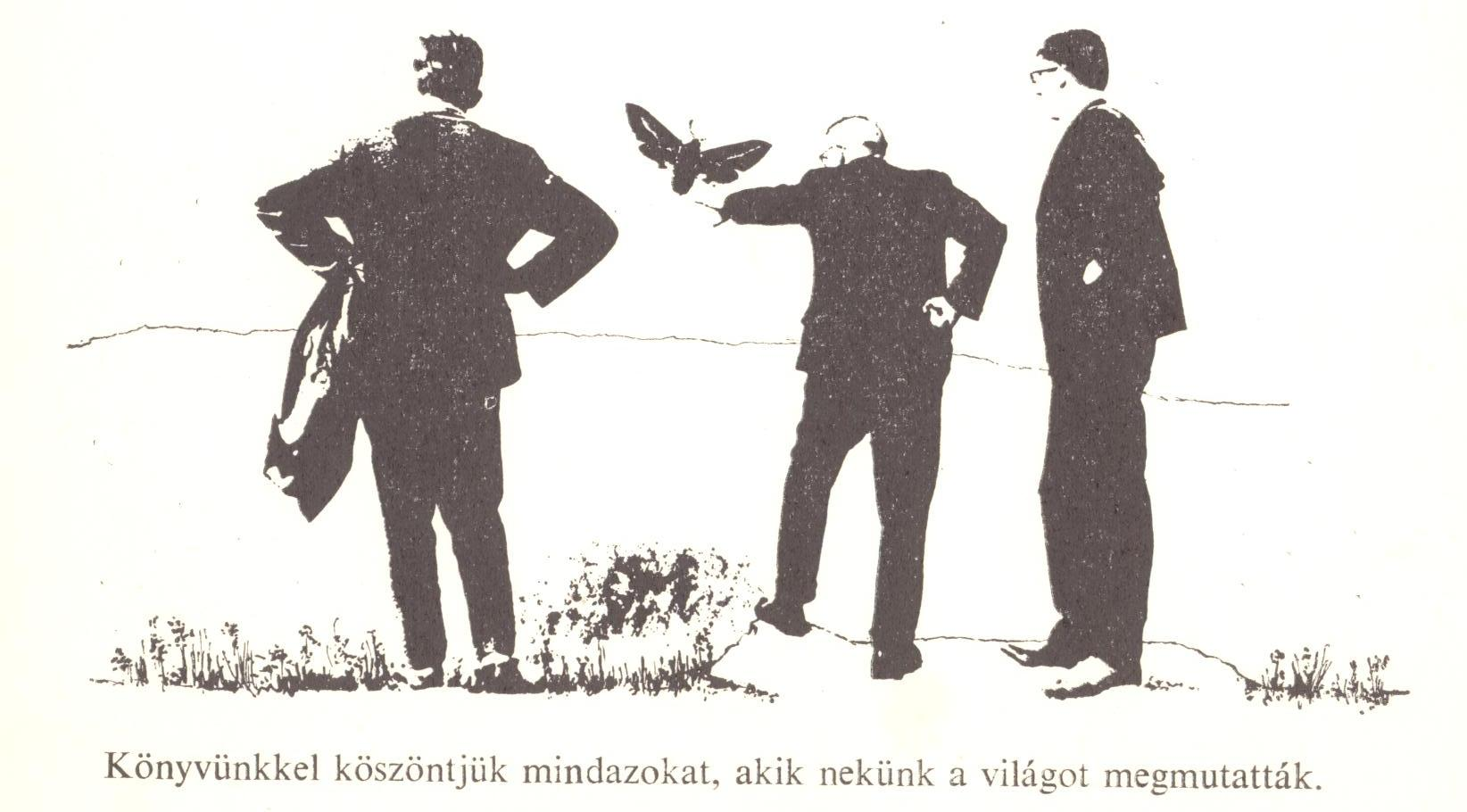 lpp.jpg