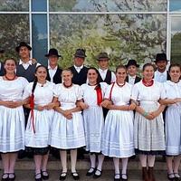 A Cserebingó tánccsoport is részese volt a Guinness - rekordnak