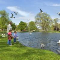 Mennyit ér egy városban telepített park?