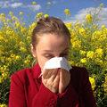 A légszennyezés megsokszorozza a pollenallergiát