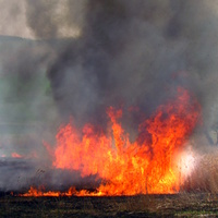 A fűtési idény után a nyílt téri tüzek szennyeznek