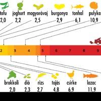 A sertéspörkölt vagy a kenyér az alapvetőbb élelmiszer?