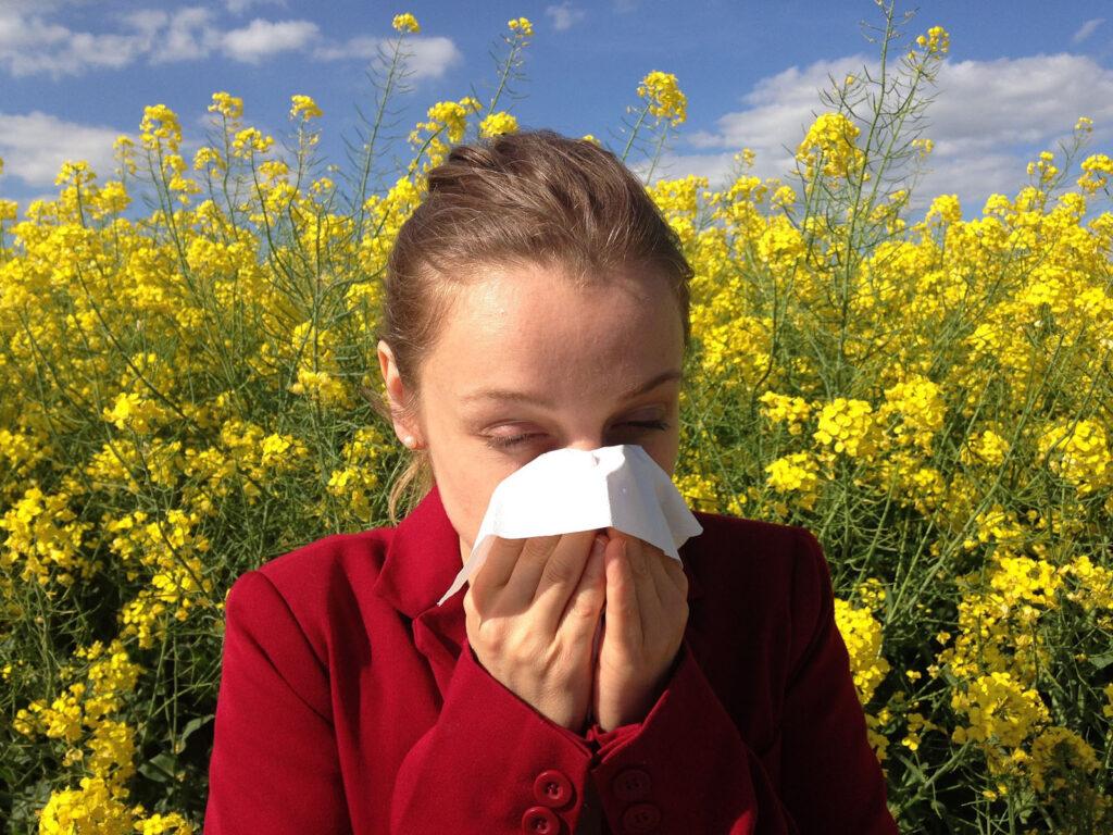 allergia-1024x768.jpg