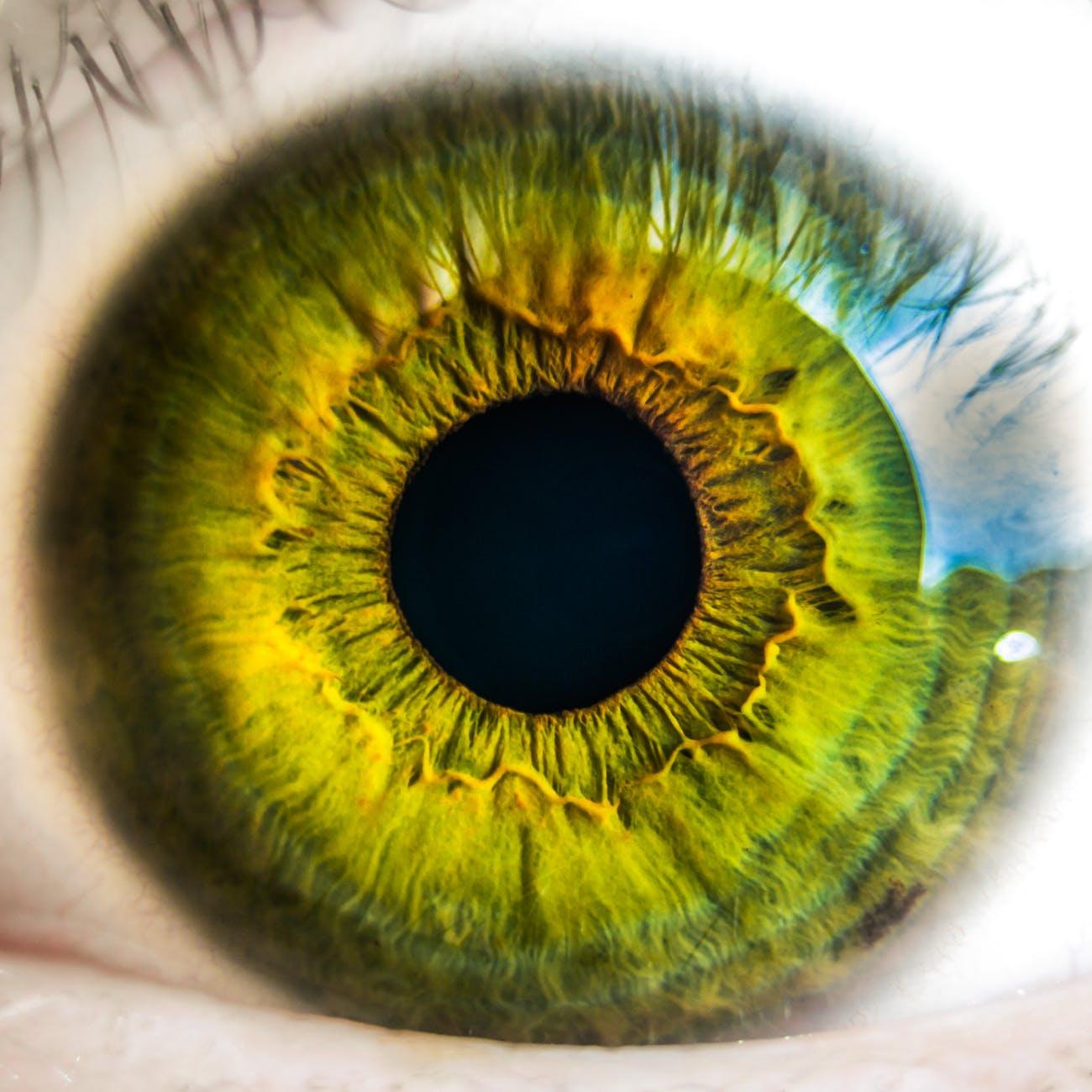 Zyprexa a látáshoz