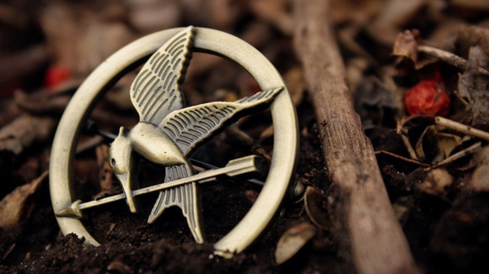 the-hunger-games-items-on-etsy-121272a9ba.jpg