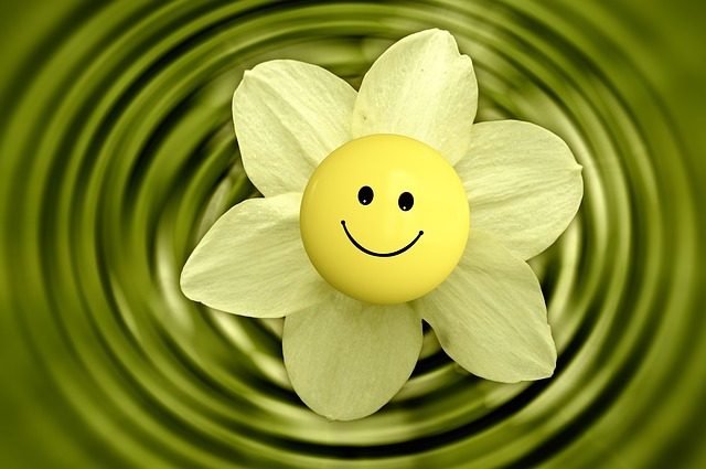 flower-233838_640.jpg