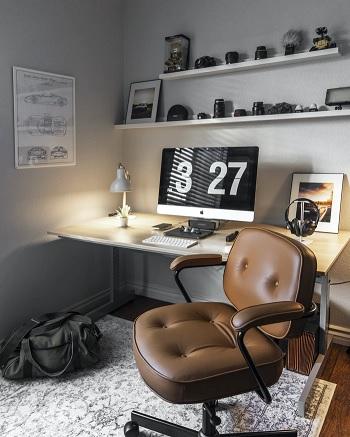 home_office_pleasure.jpg