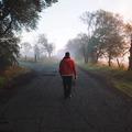 7 egyszerű tipp, hogy mestere legyél az érzelmeidnek, amikor döntést hozol