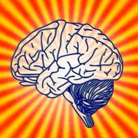 7 szokás,ami tényleg jó hatással van az agyadra a tudomány szerint!