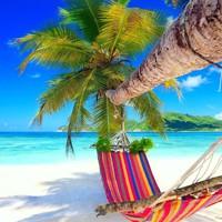 TOP 5 nyári dekorációs ötlet a trópusi hangulat jegyében