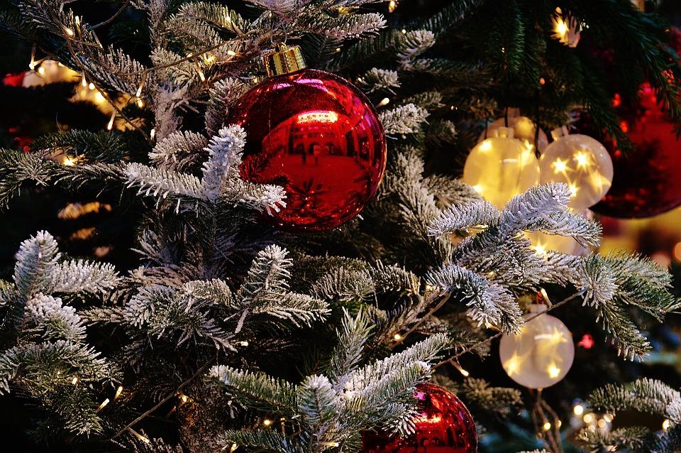 christmas-1079912_960_720.jpg