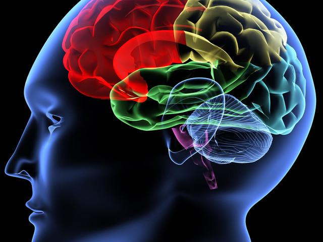 6 hobbi amitől okosabb leszel!