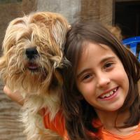 Kilenc ok, hogy miért lehetsz jobb szülő, ha felelős kutyatartó vagy