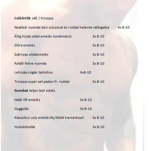 zyzz 2.png
