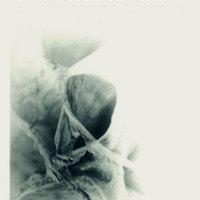 e-könyv | Lányi András – A KETTÉSZAKÍTOTT ÜSTÖKÖS