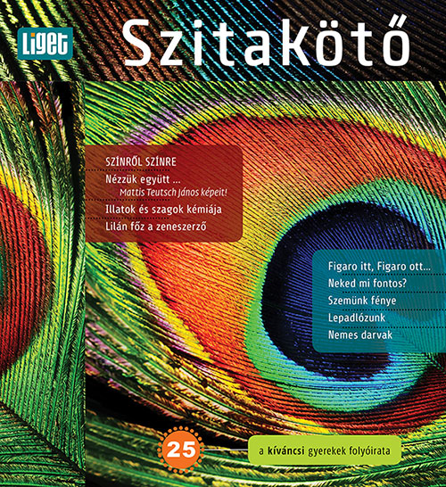2014-25-borito.jpg
