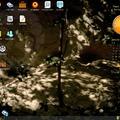 Puppy Linux 5.2