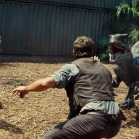 Jurassic World elmélkedés – Idomítható Velociraptorok