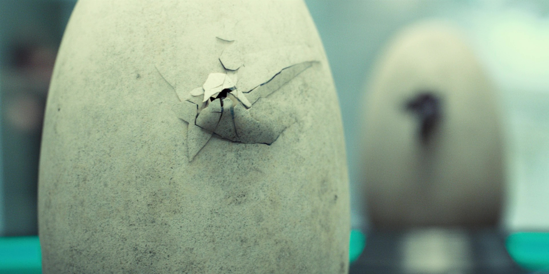 indminus_rex_eggs.jpg