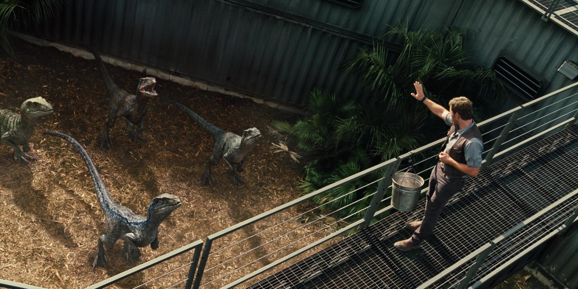 velociraptor_pack_01.jpg