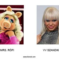 VV Szandika és Mrs. Röfi Megdöbbentő hasonlóság