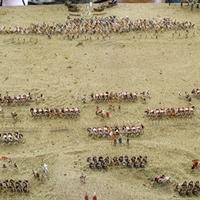A bibractei csata diorámája