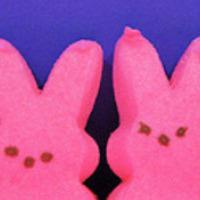Húsvét a LingWinggel: nyuszi-rap, olvasásértés és rendhagyó tojásvadászat