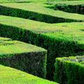 Helyesírás kezdőknek: juss ki a labirintusból, keresd meg a lovat és a tolvajt!