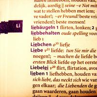 Holland szótárak