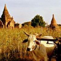 Utazzunk angolul! 1 - Fun tourist attractions: hova menjünk?